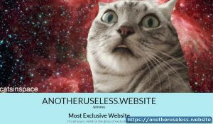 Most Exclusive Website - like the name states, mostexclusivewebsite really is exclusive, so exclusive that you need to take a ticket.