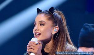 Ariana Grande denied by a cat