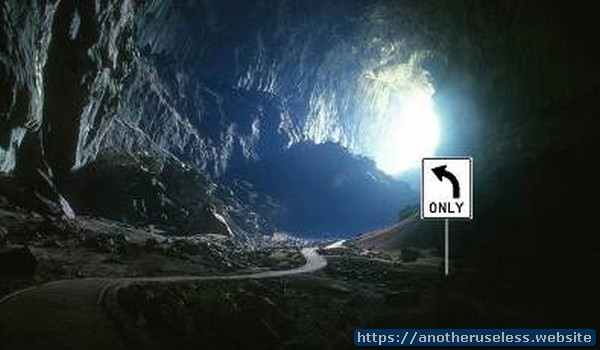 Bats always turn left when exiting a cave