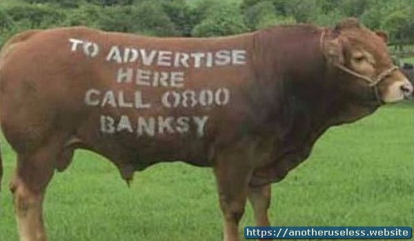 In 1984, a Canadian farmer began renting advertising space on his cows.