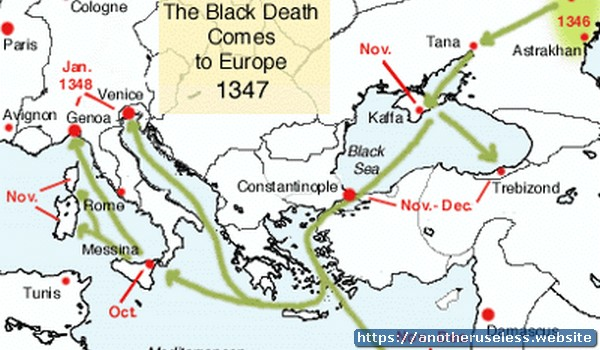 The Black Death reduced the population of Europe by one third in the period from 1347 to 1351.